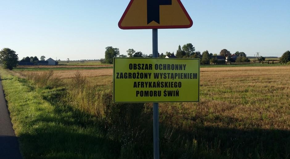 MRiRW informuje o wysokości wsparcia dla rolników poszkodowanych przez ASF
