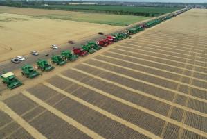 Na polu pszenicy w Kanadzie pracowały wspólnie 303 kombajny zbożowe, fot. mat. prasowe