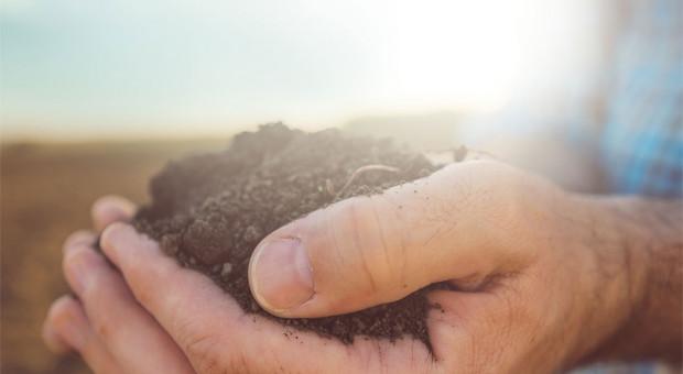 Poznaj lepiej swoją glebę