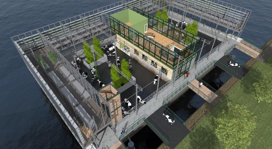 Pierwsza na świecie pływająca farma mleczna ruszy w tym roku w Rotterdamie