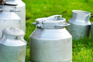 Niemcy: Cena mleka wzrosła po raz pierwszy w tym roku