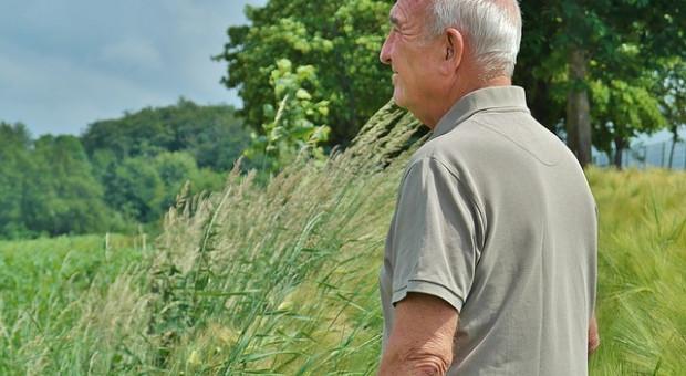 Dania: Co trzeci rolnik w wieku emerytalnym