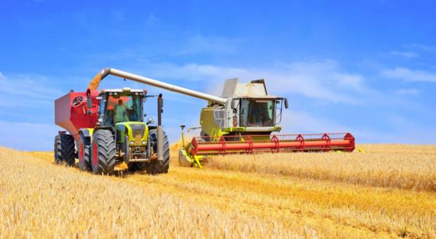 Rosja: Do 21 sierpnia zebrano 72,5 mln ton zboża
