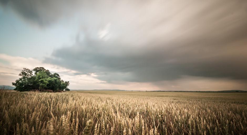 Burze i ochłodzenie w prognozie pogodowej na najbliższe dni