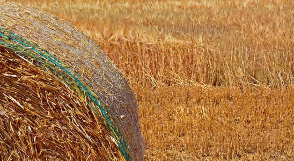 Niemcy: Program pomocy dla rolnictwa wymaga 340 mln euro