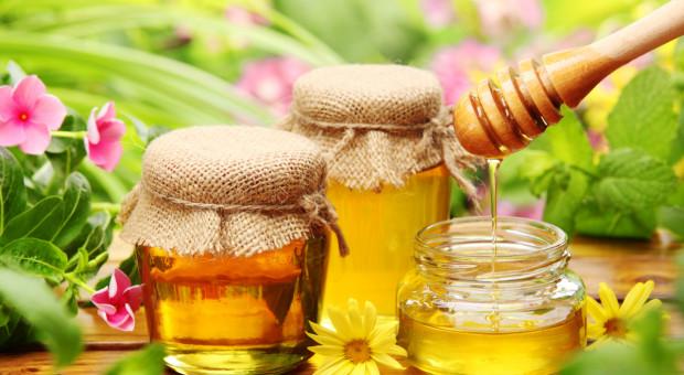 Miód z Puszczy Boreckiej na liście produktów tradycyjnych