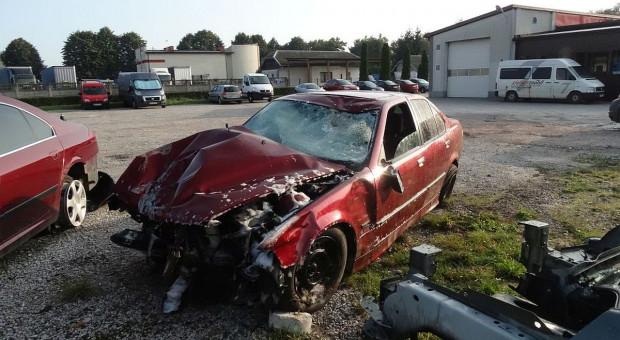 BMW rozjechało rolnika zrywającego maliny