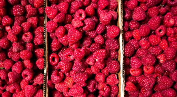 Inspekcja Handlowa kontrolowała skupy owoców miękkich