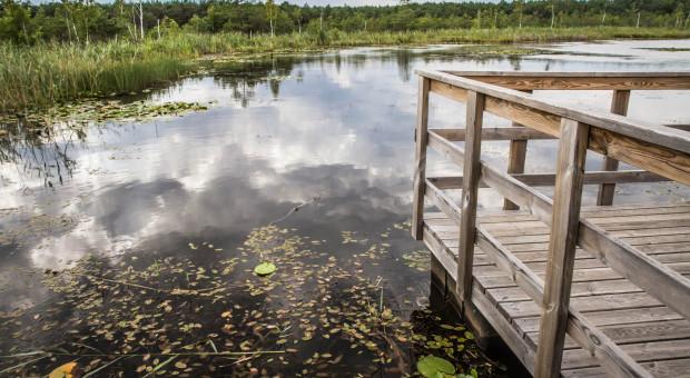 MRiRW: Rusza pomoc suszowa dla rybaków stawowych