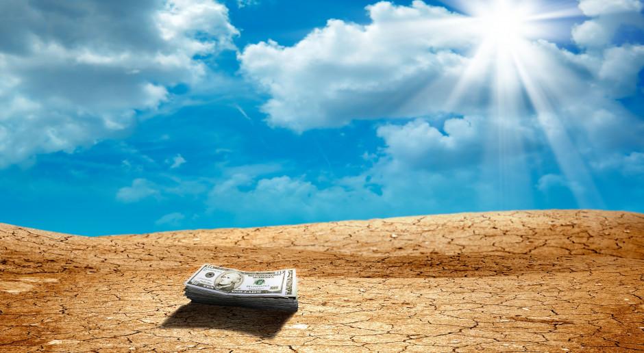 Stawka pomocy po suszy zależna będzie od rodzaju uprawy