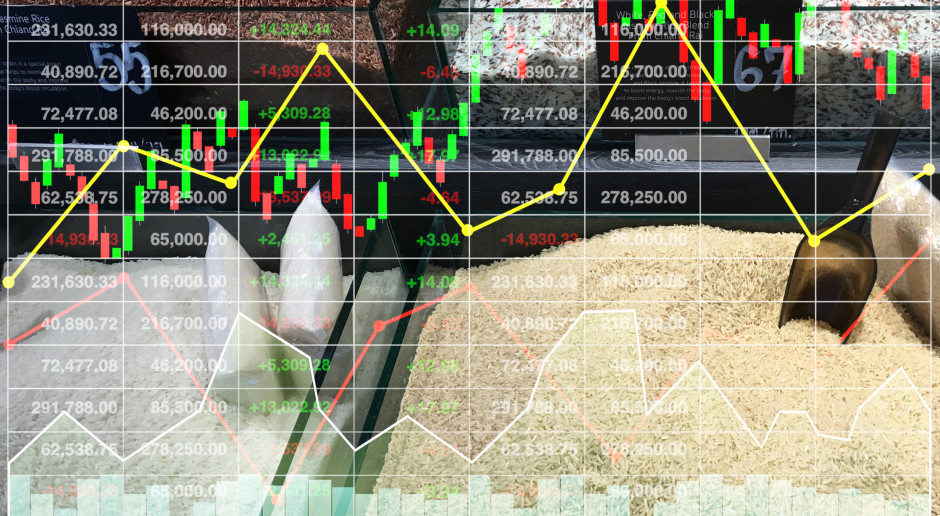 Niemcy: W sierpniu indeks cen surowców rolnych gwałtownie wzrósł