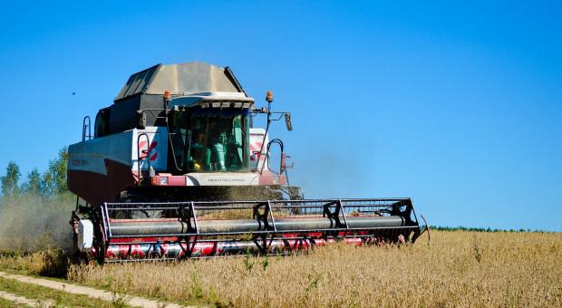 Giełdy krajowe: Producenci chętniej sprzedają zboża