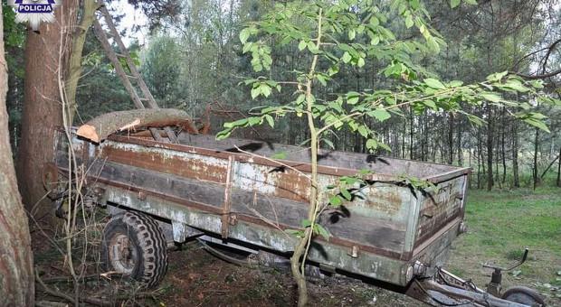 Wypadki przy wycince drzew