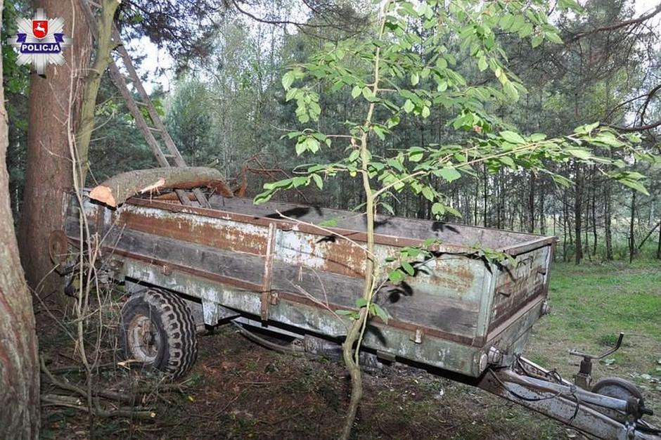 W powiecie zamojskim podczas wycinki drzew poszkodowany został 47-latek z gminy Skierbieszów; Zdjęcia: policja
