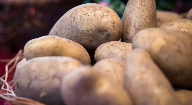 Bronisze: ożywienie w handlu, droższe niż przed rokiem jabłka i ziemniaki