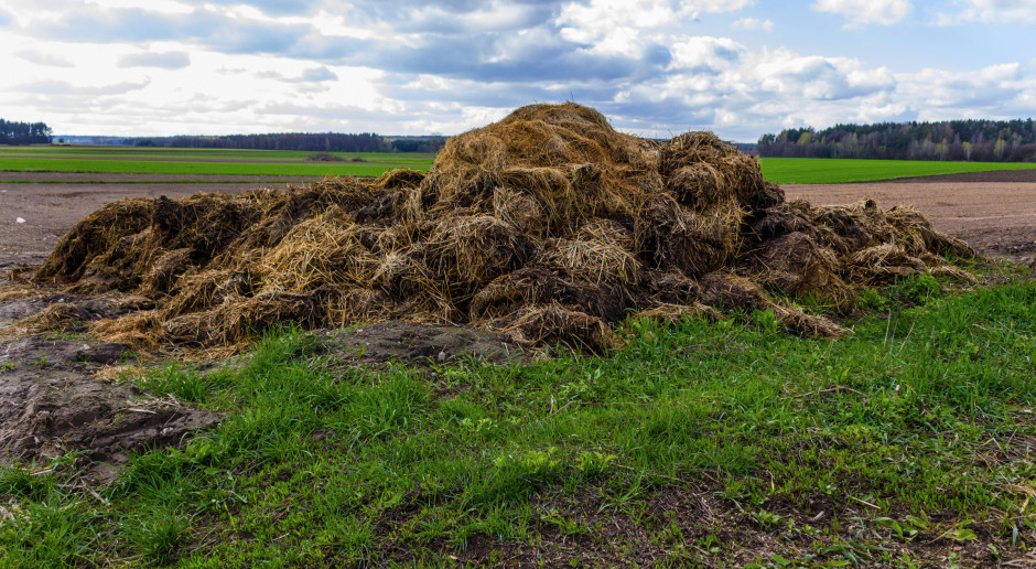 Zapachy i hałasy na wsi? Rolnicy chcą ustawy w tej sprawie