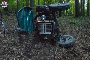Tragiczny wypadek przy wycince drzew