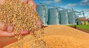 Dlaczego trudno zdobyć informacje o rynku zbóż w Chinach?