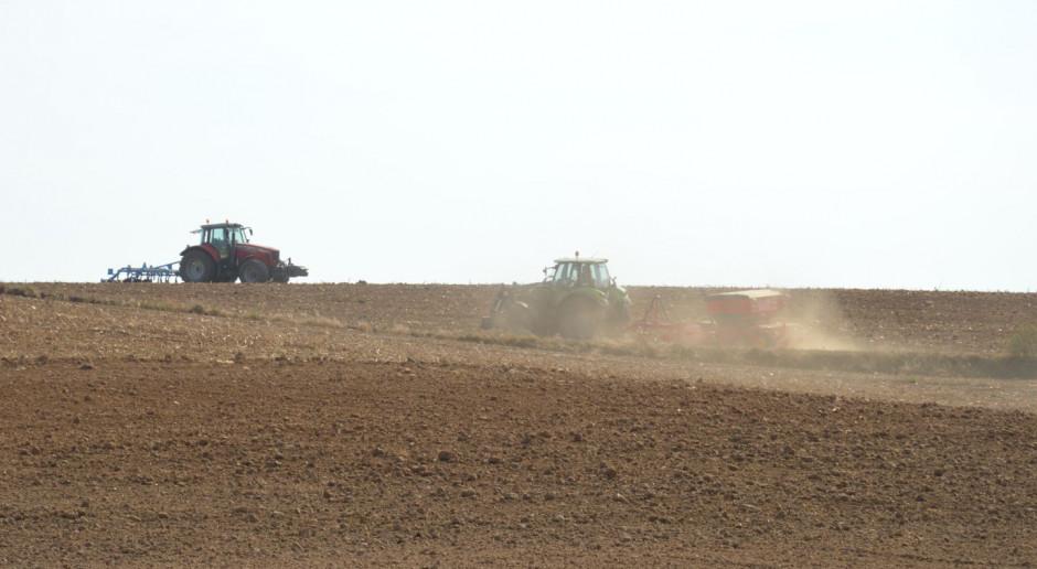 Optymalne terminy siewu zbóż ozimych właśnie mijają