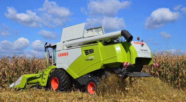 Rekord plonu kukurydzy z maszynami Claas
