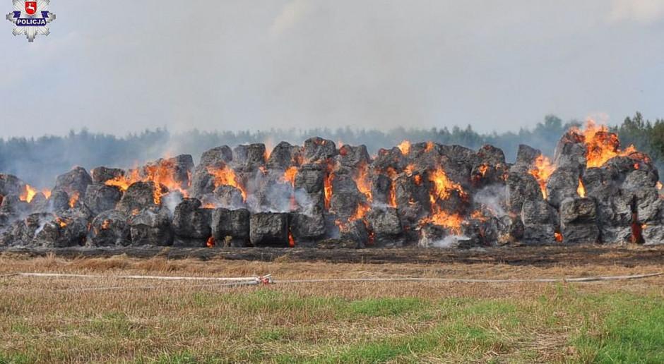 Spłonęło tysiąc balotów