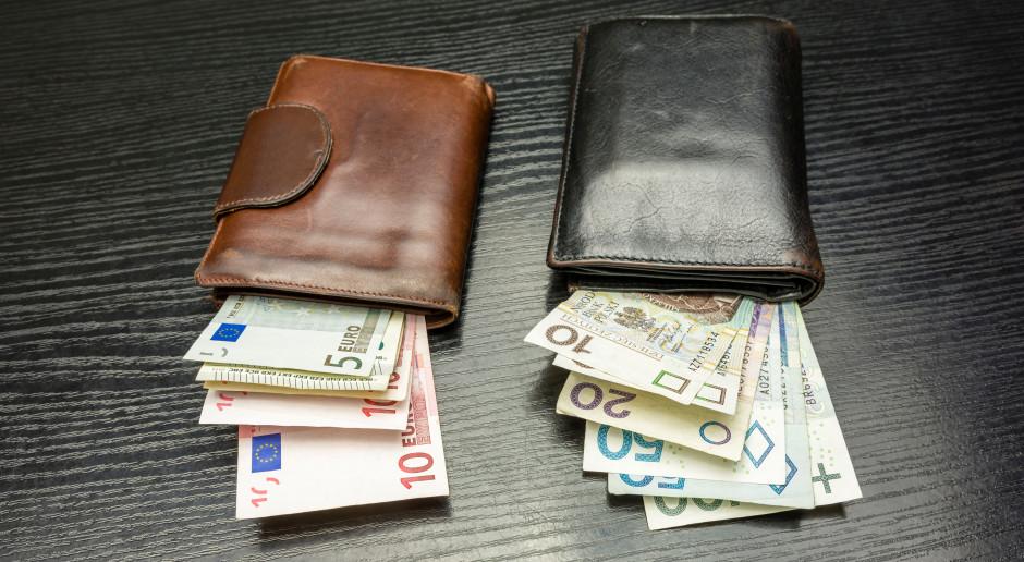 Euro do dopłat znów tańsze niż w ubiegłym roku