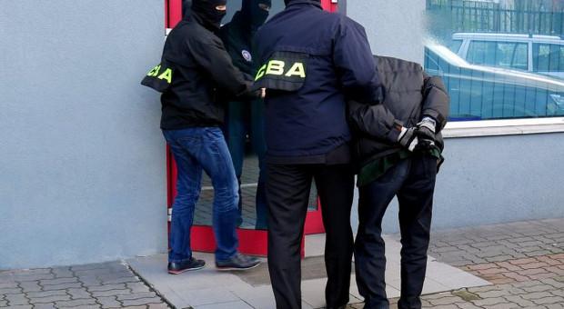 Korupcja przy dostawach biomasy dla Elektrowni Szczecin