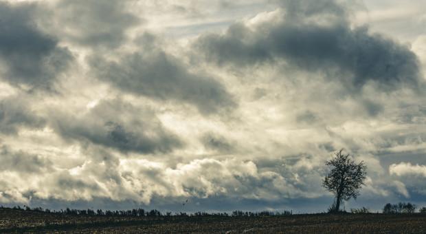IMGW ostrzega przed silnym wiatrem w części czterech województw