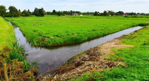 Inwestycje chroniące gospodarstwa przed ASF lub powodzią ze wsparciem z PROW