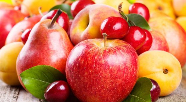 Ardanowski: skandal z wydatkowaniem środków przez grupy producentów owoców