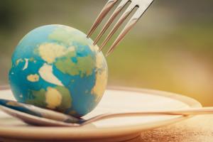 Ziemia wykarmi 10 mld ludzi – ale tylko z naszą pomocą