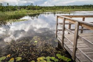 Gróbarczyk: ok. 300 mln euro na programy dot. rolnictwa, szczególnie ochrony wód