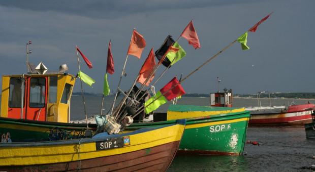UE z kwotami połowowymi dla Bałtyku na przyszły rok; ekolodzy krytykują