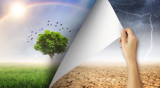 Szacowanie strat po suszy na podstawie spadku dochodów, a nie strat w uprawach?