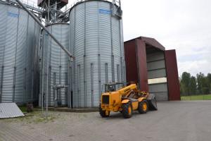 Drugi tydzień stabilizacji cen zbóż w skupach