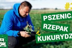 Cała prawda o braciach i ich pszenicy! Agrorewolucje #3