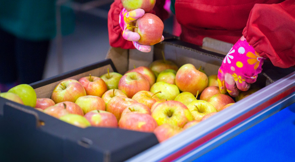 28 września - Światowym Dniem Jabłka