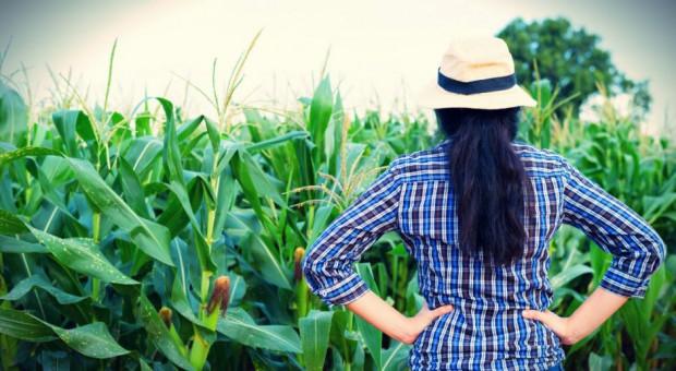 Polka w grupie najbardziej innowacyjnych rolniczek w UE