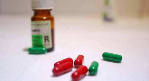 Za trzy lata pasza bez antybiotyków