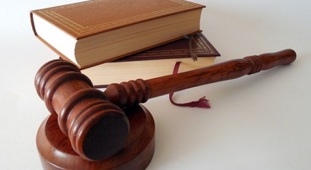 6 listopada będzie wyrok w sprawie L.Z. i Elewarru