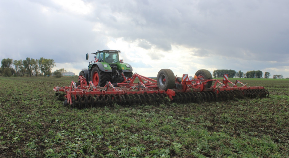 Nowatorskie rozwiązania w uprawie a efekt końcowy