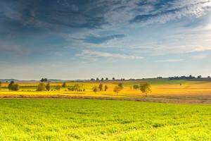 Pełnomocnik rządu do kształtowania ustroju rolnego niepotrzebny?