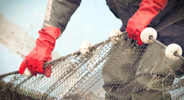 Sejm przyjął nowelę ustawy o rybołówstwie morskim