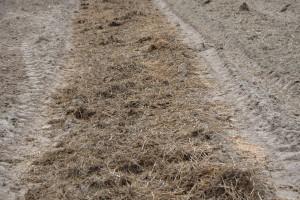 Termin a stosowanie nawozów naturalnych w warunkach suszy