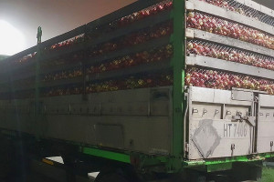 Kary za przeładowane jabłkami przyczepy