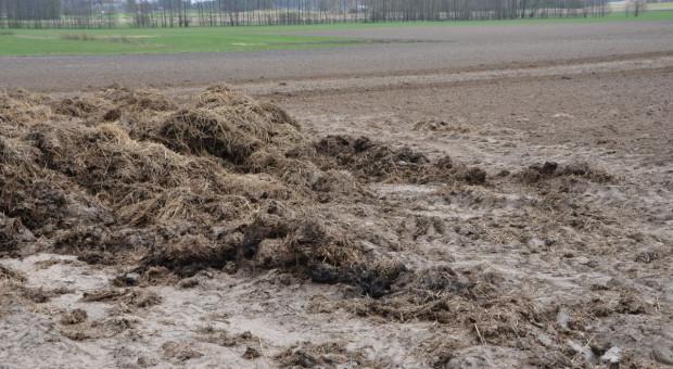 W warunkach suszy nawozy naturalne do końca listopada