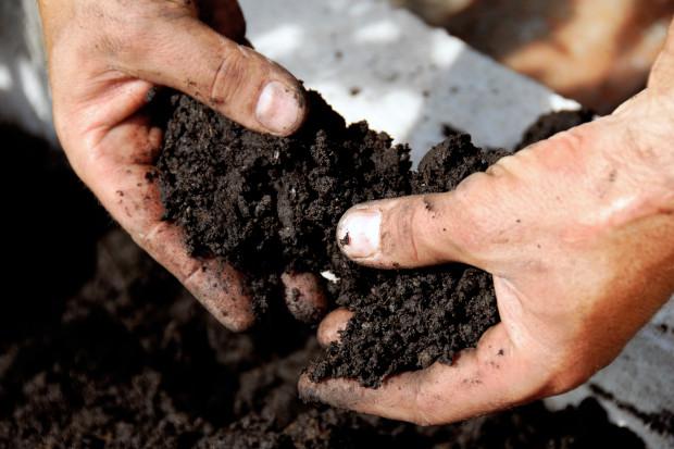 Dobre praktyki w zakresie nawożenia gleby i żywienia roślin