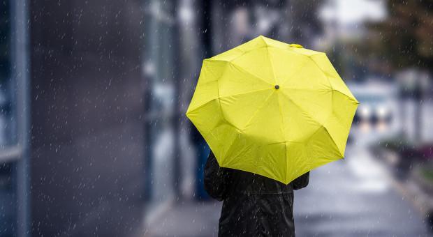 Ekspert o zmianach klimatu w Polsce: ekstremalnie ciepłe lata i szare, deszczowe zimy