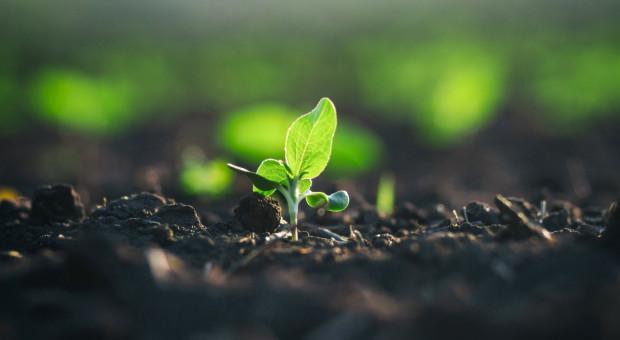 Powstała koalicja na rzecz Rozwoju Rynku Żywności Bio