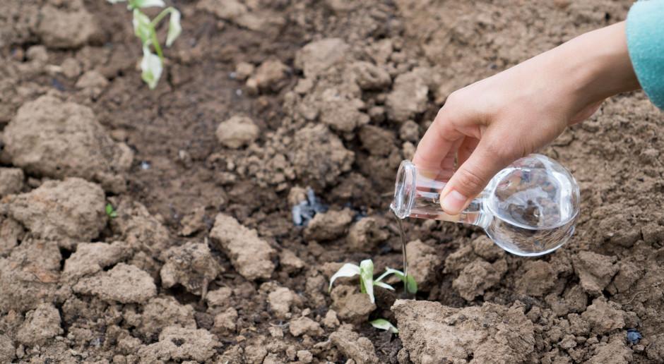 Pełną pomoc suszową w wysokości 1 tys. zł na ha otrzyma 30 tys. rolników